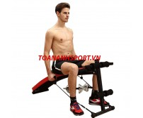 Toàn Anh Abdominal sit-up bench 9504
